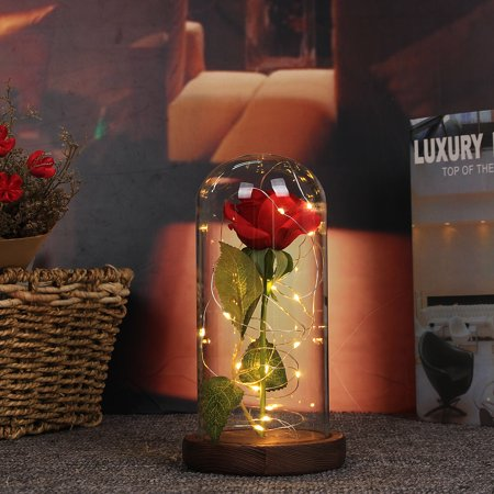 Beauty and The Beast Rose Preserved Fresh Flower Red Rose The Beast Glass Cover + LED Light Unique Gifts Valentine's Day](Led Flowers)