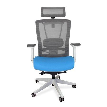 autonomous ergochair premium ergonomic office chair blue