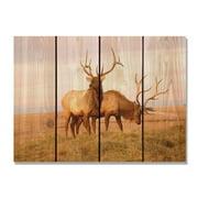 Day Dream HQ BE2216 22 x 16 in. Bull Elk Inside & Outside Cedar Wall Art