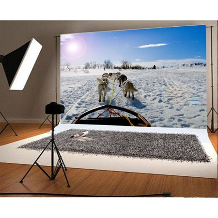 GreenDecor Polyster 7x5ft Photography Backdrop Christmas Snow Covered Landscape Bloeh Sled Dog Nature Winter Scene Background Sweet Baby Kids Children Lover Photo Studio Props ()