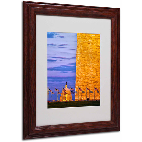 "Trademark Fine Art ""America"" Canvas Art by CATeyes, Wood Frame"