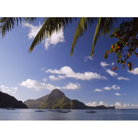 Palawan Province, El Nido, Bacuit Bay, Cadlao Island and Palm Trees, Philippines Print Wall Art By Christian