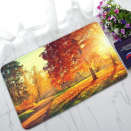 YKCG Autumn Park Scene Fall Trees and Leaves Doormat Indoor/Outdoor/Bathroom Doormat 30x18 inches (Fall Trees Scene)
