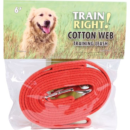 Coastal Pet Products-Train Right! Cotton Web Dog Training Leash- Red 6 (Cotton Training Leash)