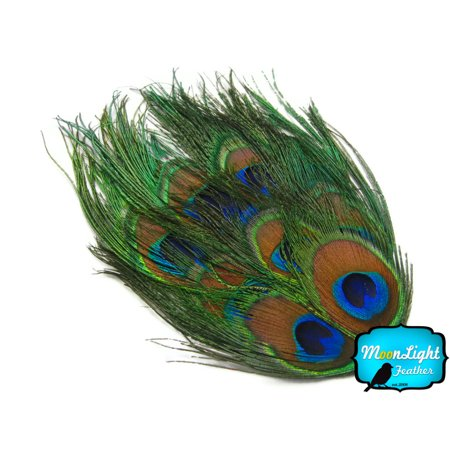Bag Of Peacock Feathers (1 Piece - Natural Uncut Peacock Eye Feather)