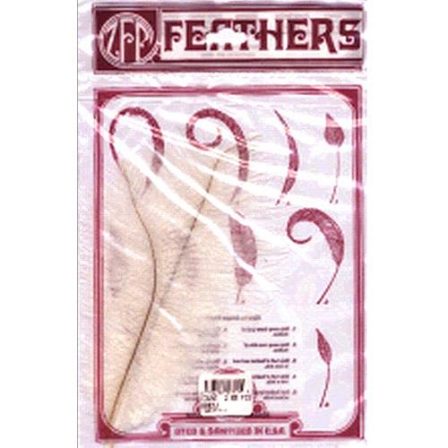 Ostrich Feathers, 2/Pkg