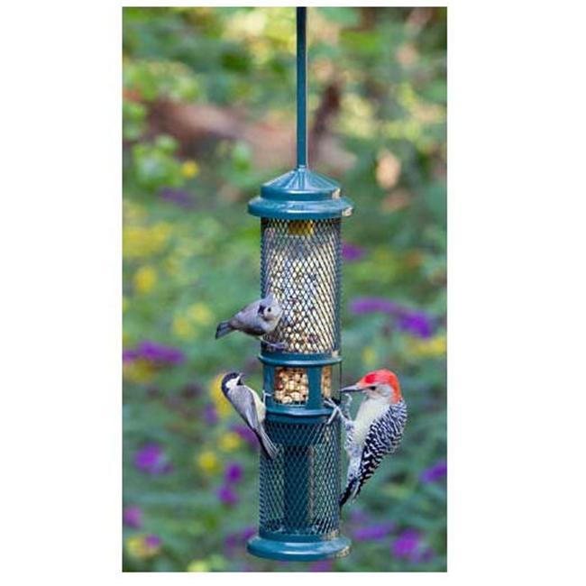 Brome Bird Care BD1052squirrel Buster Peanut Plus