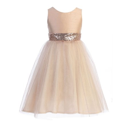 Kids Dream Blush Sequin Glitter Tulle Plus Size Dress Big Girls