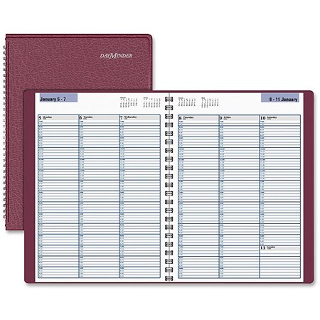 AT-A-GLANCE DayMinder Professional Weekly Appointment (Small Weekly Appointment Book)