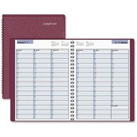 AT-A-GLANCE DayMinder Professional Weekly Appointment Books