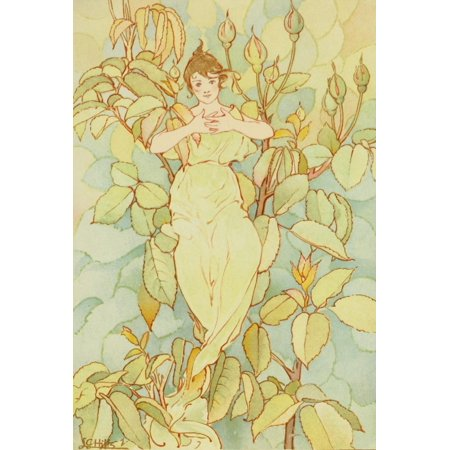 Dream Roses 1897 Woman In Green Poster Print By  Laura C Hills