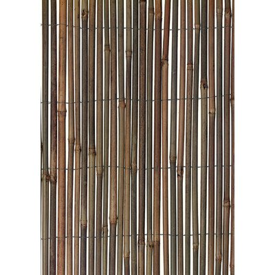 Bamboo Fence, 13' x 5'