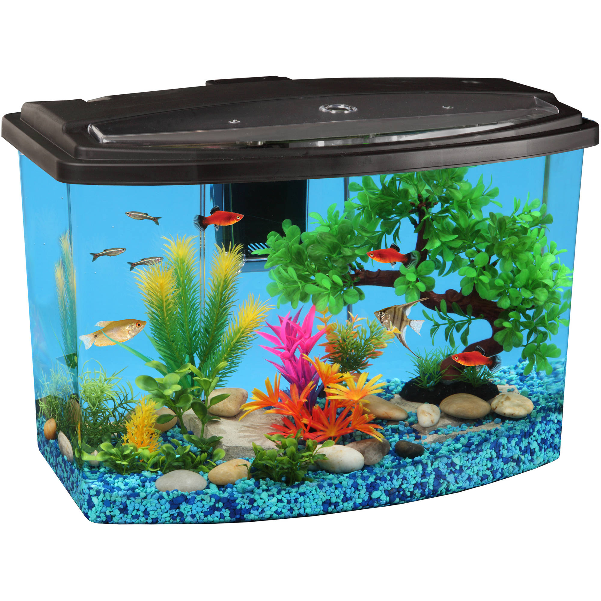 Hawkeye 7 Gallon Bow View Aquarium Kit With LED Light And Power Filter