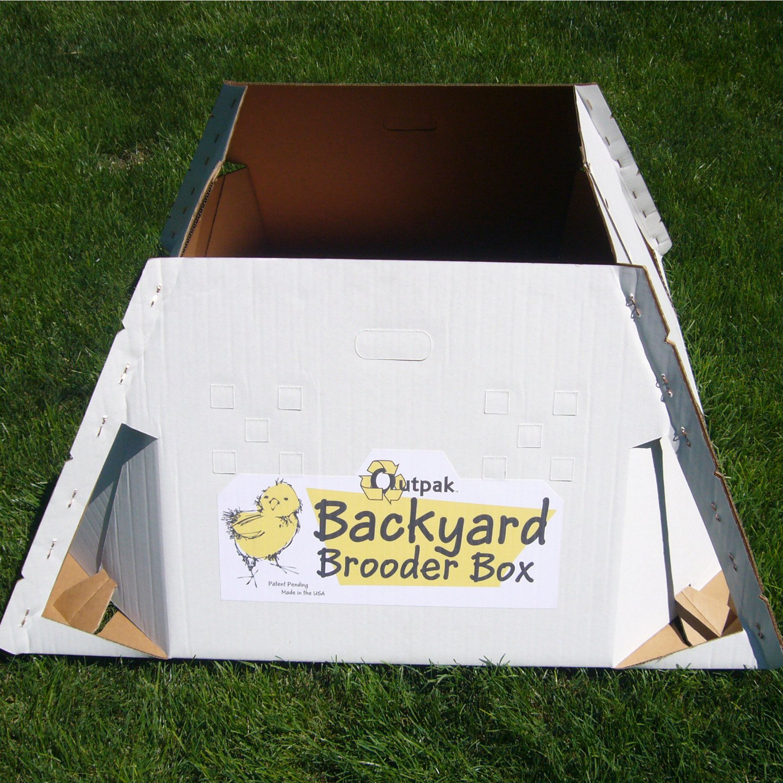 Back Yard Brooder Box