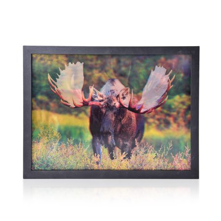 Shop LC Moose 3D Printed Framed Picture For Wall Decoration 17x13