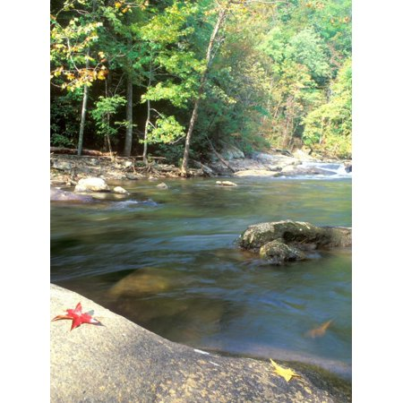 Bald River, Cherokee National Forest, Tennessee, USA Print Wall Art By Rob Tilley