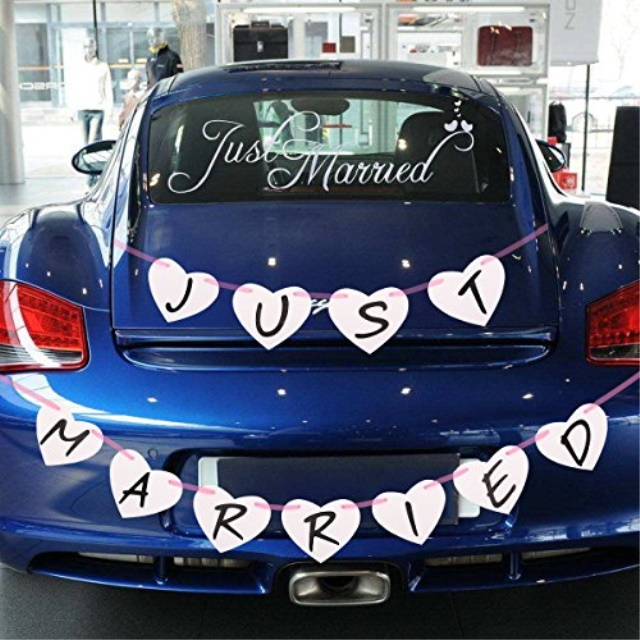 Leesky Just Married Bunting Banner And Just Married Car Window
