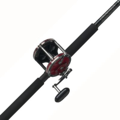 PENN Senator Conventional Reel and Fishing Rod Combo