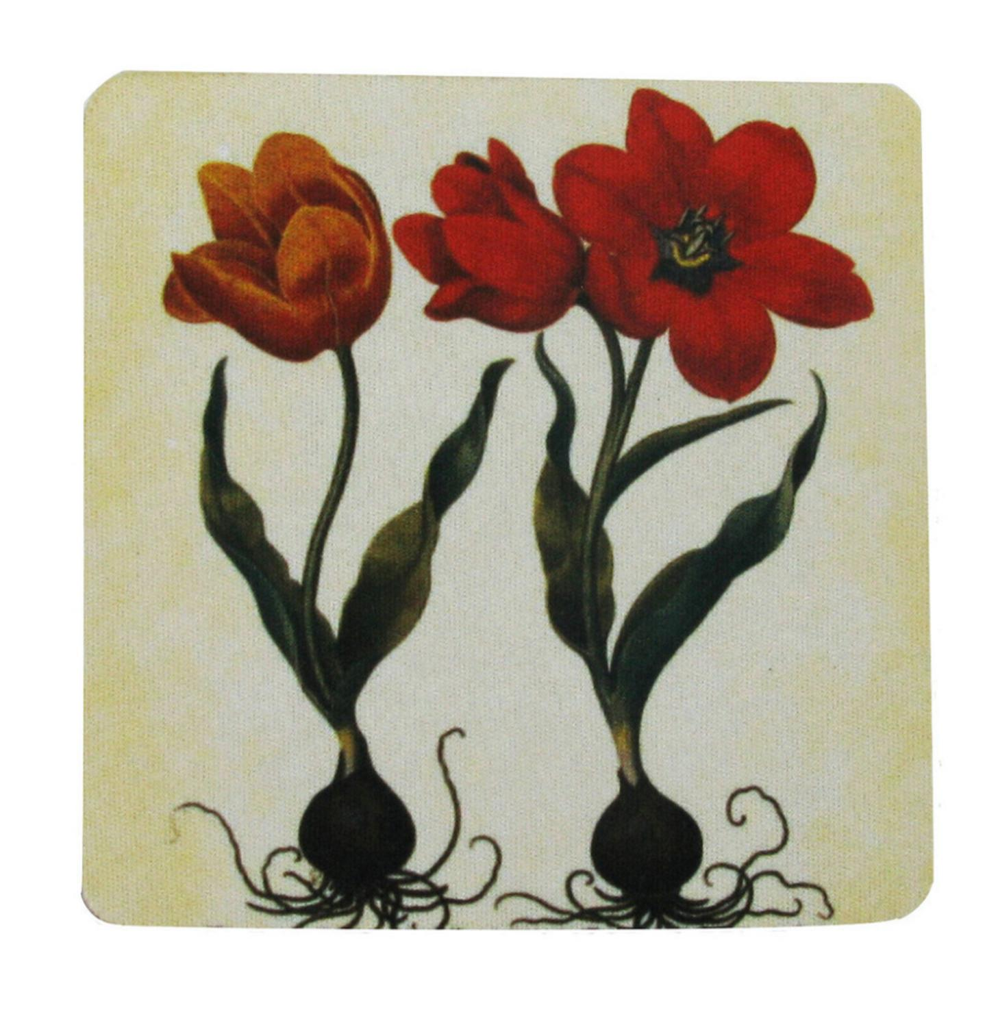 Pack of 8 Absorbent Antique Style Botanical Tulip Print Cocktail Drink Coasters 4""