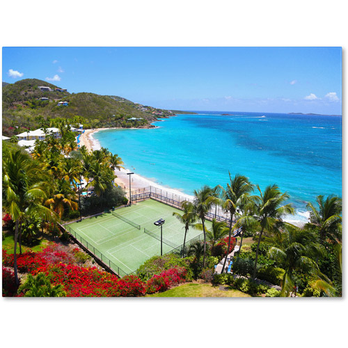 "Trademark Fine Art ""Virgin Islands 5"" Canvas Art by CATeyes"