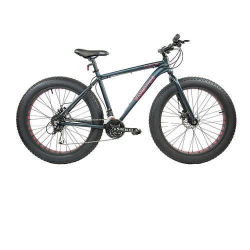 27-Speed Fat Tire Bike 20'' by Corsa - Mammoth 2.0