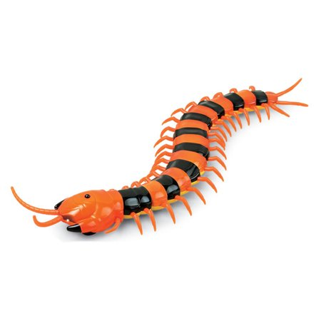Gag Toys (1PCS Creative Funny Infrared Remote Control USB RC Centipede Scolopendra Creepy-crawly Toy Stress Relief Vent Tricky Toys Gag)