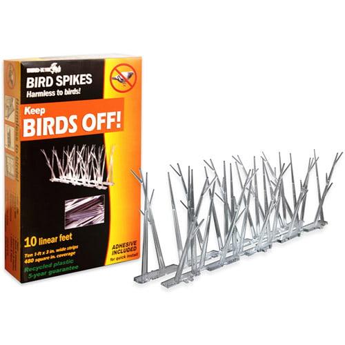 Bird-X Plastic Bird Spikes Kit with Glue, 10'