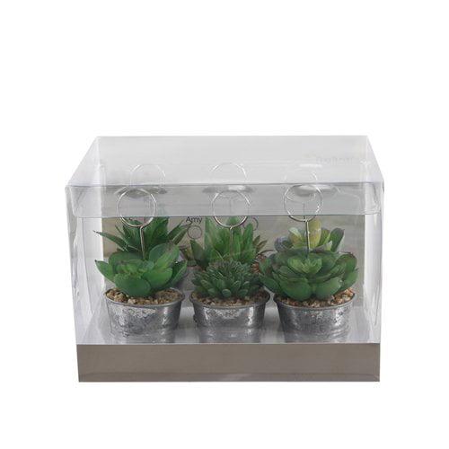 Gracie Oaks 6 Piece Table Sign Succulent Desktop Plant in Pot Set