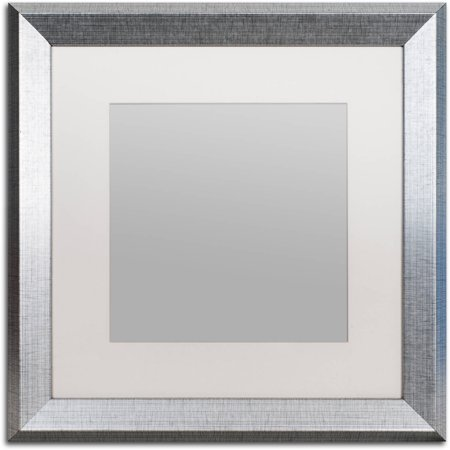 Trademark Fine Art Heavy-Duty 16x16 Silver Picture Frame with 11x11 ...