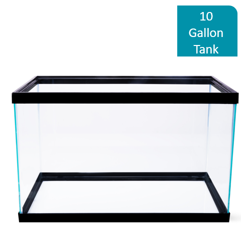 Aqua Culture 10-Gallon Glass Aquarium by Wal-Mart Stores, Inc.