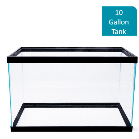 Aqua Culture 10-Gallon Glass Aquarium