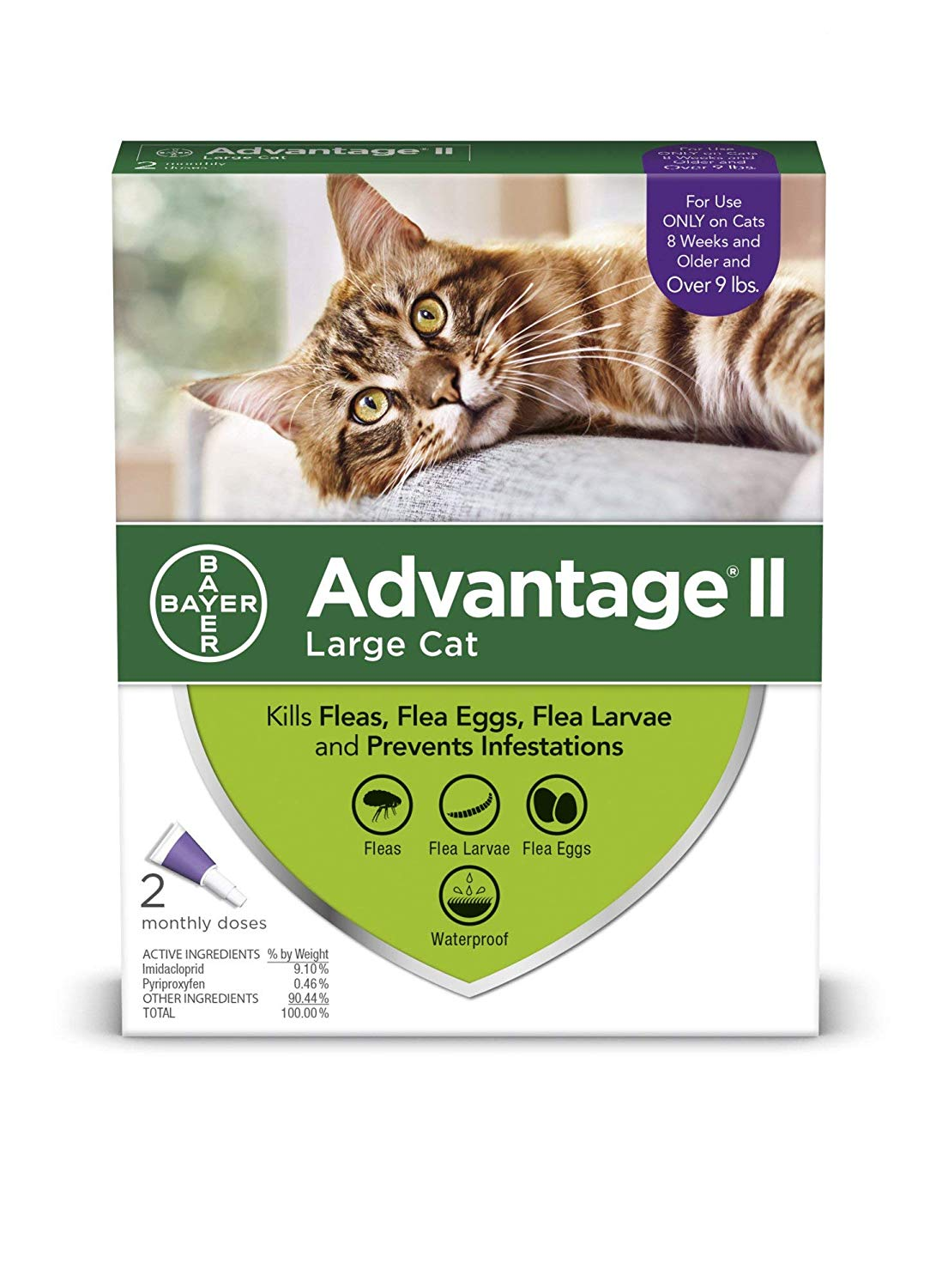 Advantage II Flea Control Large Cat (for Cats over 9 lbs.) 2 Month, Kills adult fleas, eggs and larvae By... by