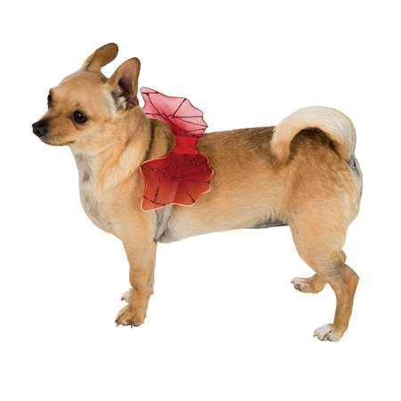 Small Red Devil Demon Glitter Wings Halloween Pet Dog Dress Up Costume-M/L