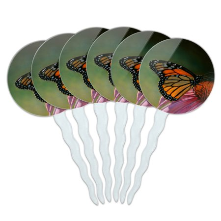 Monarch Butterfly and Coneflower Cupcake Picks Toppers Decoration Set of 6 Monarch Butterfly Decorations