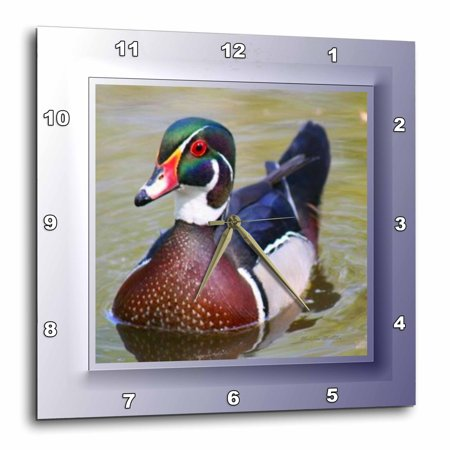 3dRose Wood Duck, Wall Clock, 13 by 13-inch