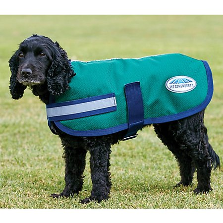 WeatherBeeta Parka 1200D Dog Coat 22 Hunter/Navy