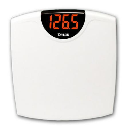 Taylor 9856 White Superbrite 1.3