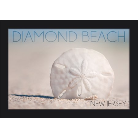 Diamond Beach, New Jersey - Sand Dollar on Beach - Lantern Press Photography (18x12 Giclee Art Print, Gallery Framed, Black Wood)