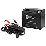 YTX12 BS 12V 10AH Battery for Kawasaki KLE650 08 12 12V 2Amp Charger Mighty Max Battery brand product
