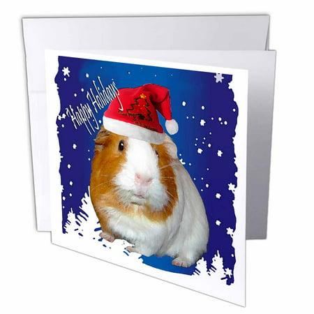 3drose guinea pig christmas greeting cards 6 x 6 inches set of 12 3drose guinea pig christmas greeting cards 6 x 6 inches set of 12 m4hsunfo