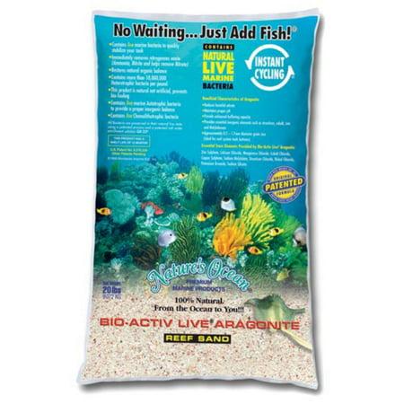 Nano Reef Aquarium (Live Reef Aquarium Sand-40lbs )