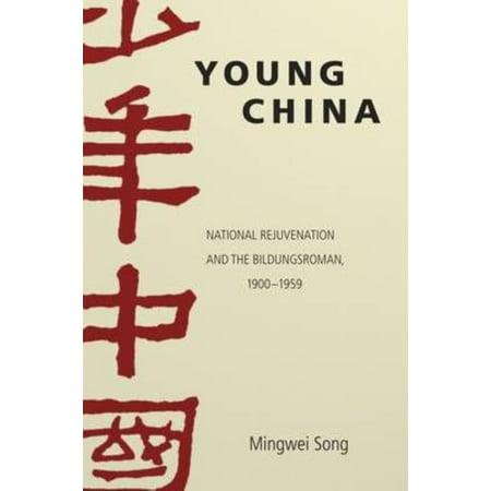 Young China  National Rejuvenation And The Bildungsroman  1900 1959