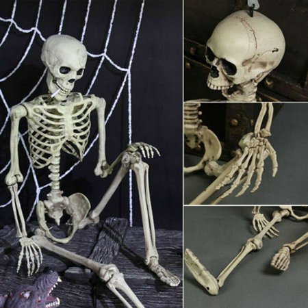 Halloween Party Entrance (Halloween Party Decoration Human Skeleton Poseable Joints Small Full Body Bones)