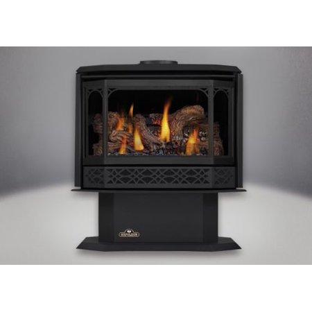 Painted Metallic Black Direct Vent Gas Stove - Natural (Black Gas Vent Paint)