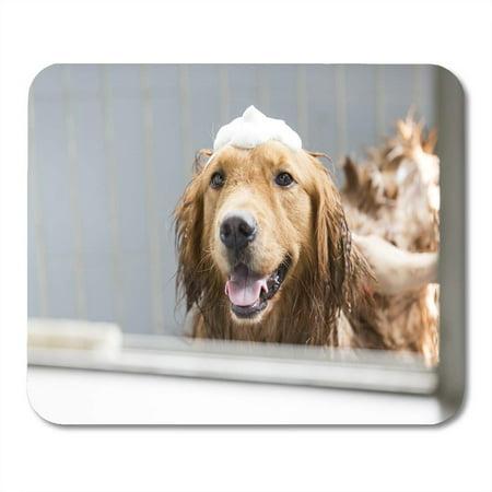 SIDONKU Joy Dog The Golden Retriever Taking Bath Foam Mousepad Mouse Pad Mouse Mat 9x10 inch