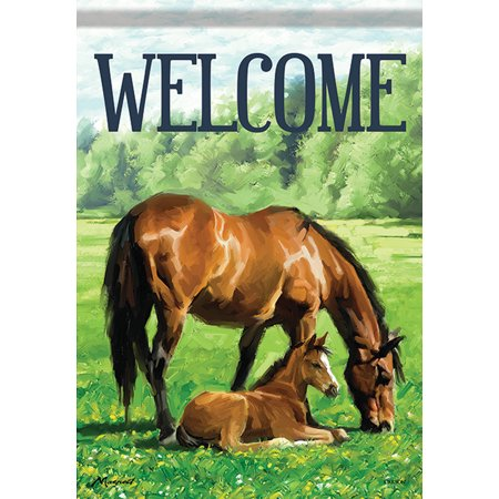 Foal Stable (Mother & Foal Horse Garden Flag Welcome Stable Spring Farm 12.5
