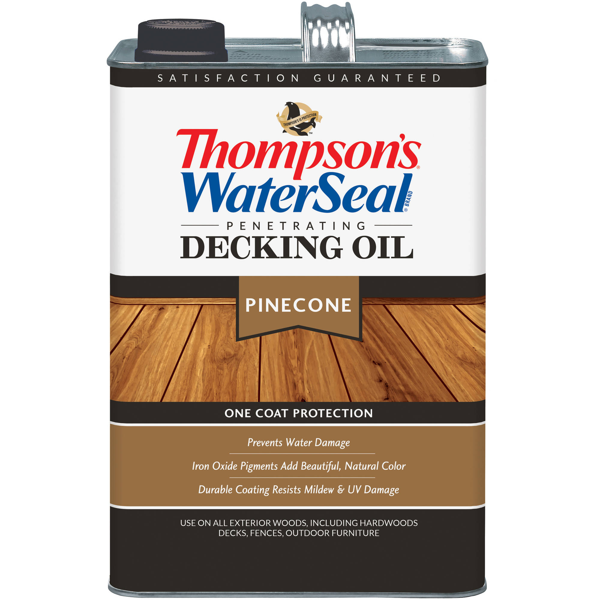 Thompson's WaterSeal Clear Waterproofer Plus Masonry Protector, 1 gal by Sherwin-Williams
