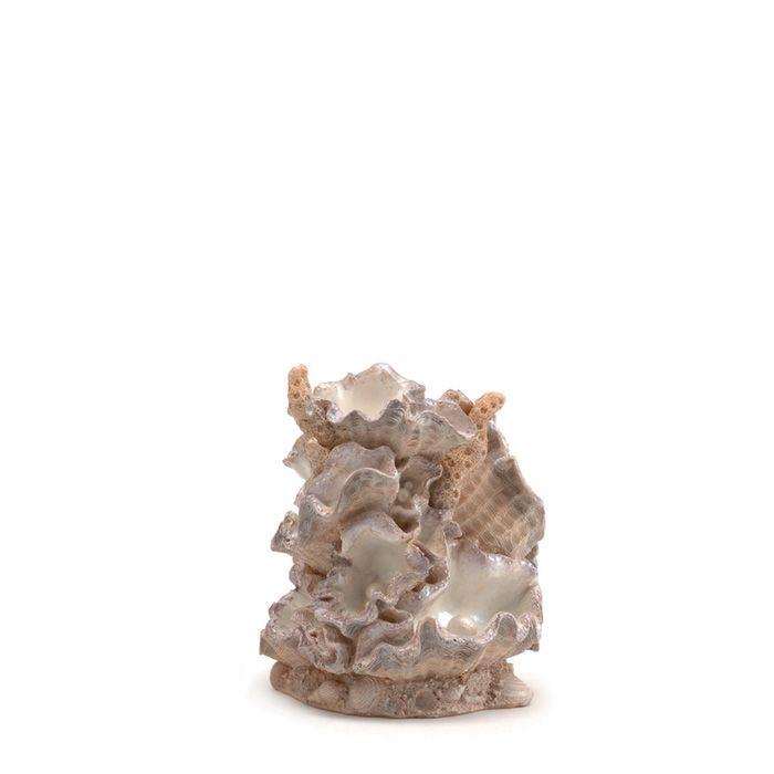 biOrb Small Clamshell Aquarium Ornament