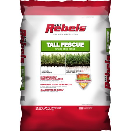 Dwarf Fescue Seed (The Rebels Tall Fescue Grass Seed, 20 lbs )