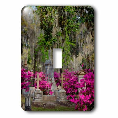 3dRose USA, Georgia, Savannah, Azaleas and headstones in Bonaventure Cemetery, Double Toggle Switch
